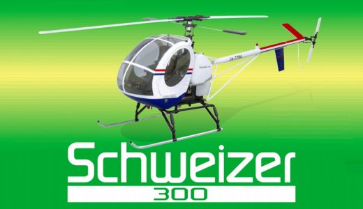 30 SCALE Schweizer 300 [0412-959]